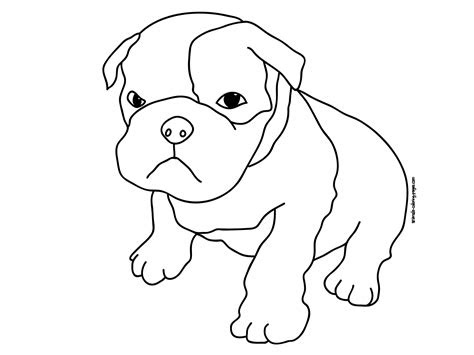 pitbull coloring pages    print