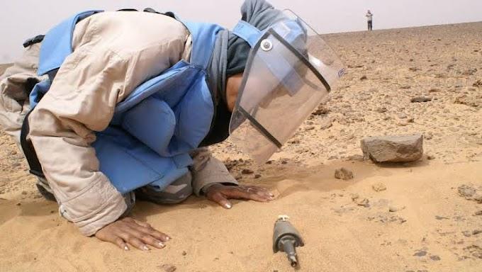 Mujeres saharauis arriesgan sus vidas para limpiar el Sáhara Occidental de las minas y explosivos.