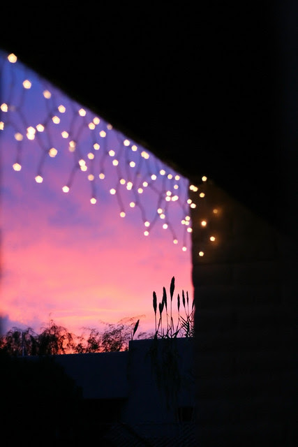 sunset & twinkle lights