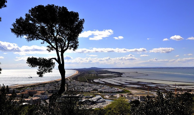 Montpellier Playa