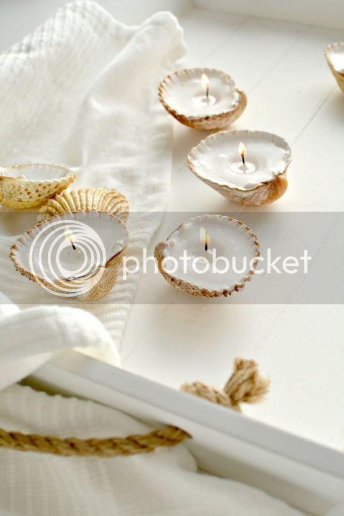 photo shell tealights1_zpsxqtchbnz.jpg