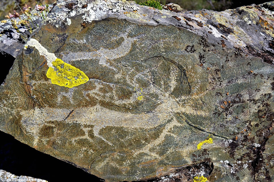 Archaeologists in Siberia have begun uncovering an extraordinary alfresco gallery of prehistoric art in the mountains