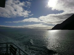Day 4: Te Anau to Milford Sound II (on the boat trip)