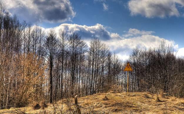 Εξαιτίας της μόλυνσης η περιοχή γύρω από το πυρηνικό εργοστάσιο του Τσερνόμπιλ δεν θα είναι κατοικήσιμη για περίπου 20.000 χρόνια
