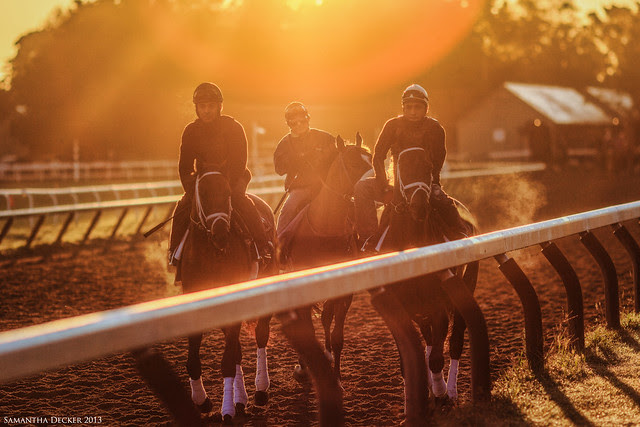 Golden Morning at the Track