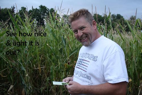 corn maze - light