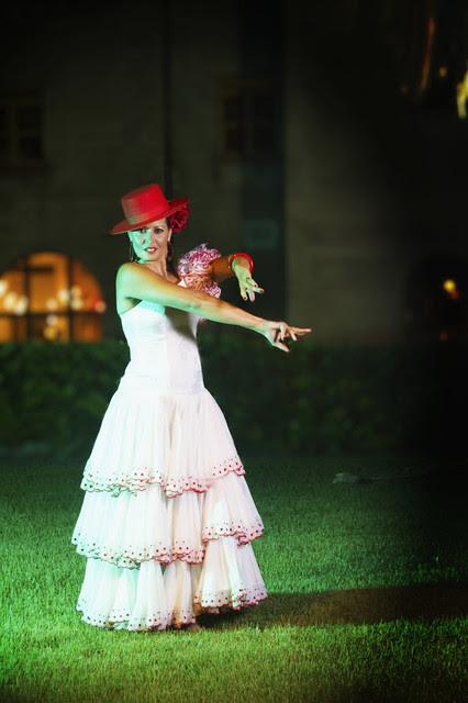 Flamenco del Sol 12
