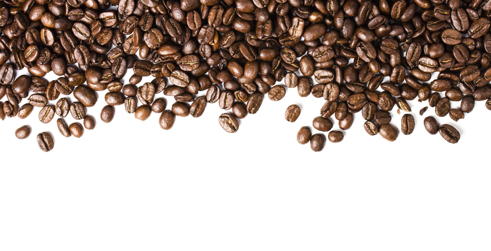 Coffee bean Espresso Cafe - Coffee Beans PNG Transparent Images png download - 979*500 - Free ...