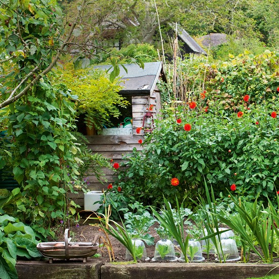 Country Garden Decorating Ideas Photograph | shed | Country