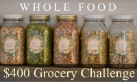 $400 Grocery Challenge