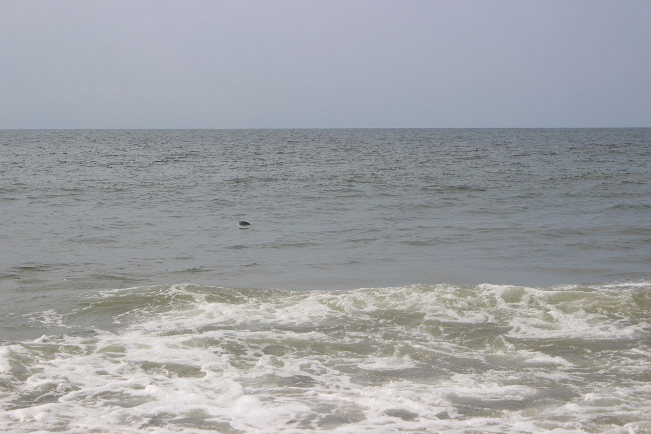 photo beach54_zps5f2a17e5.jpg