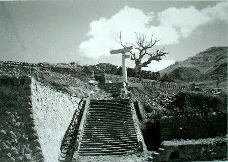 perierga.gr - Τα δέντρα που επέζησαν από το βομβαρδισμό της Χιροσίμα!