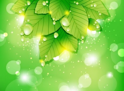 Download 9000 Wallpaper Abstrak Daun  Gratis