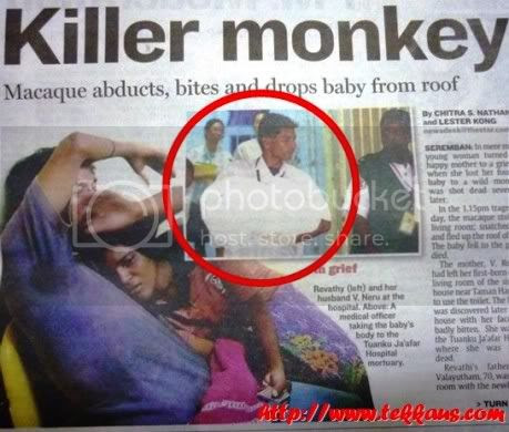 Monkey Killed 4-Day-Old Baby