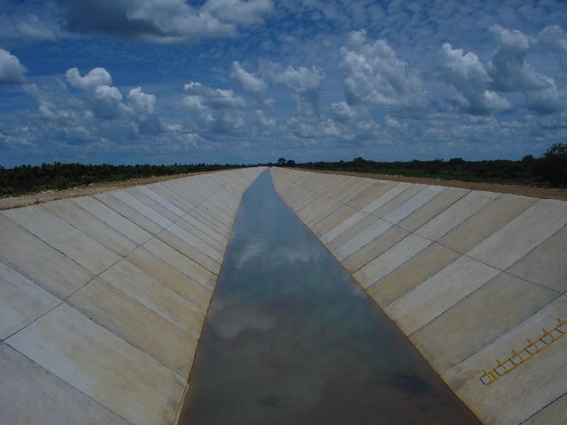 Resultado de imagem para Jaiba  irrigação