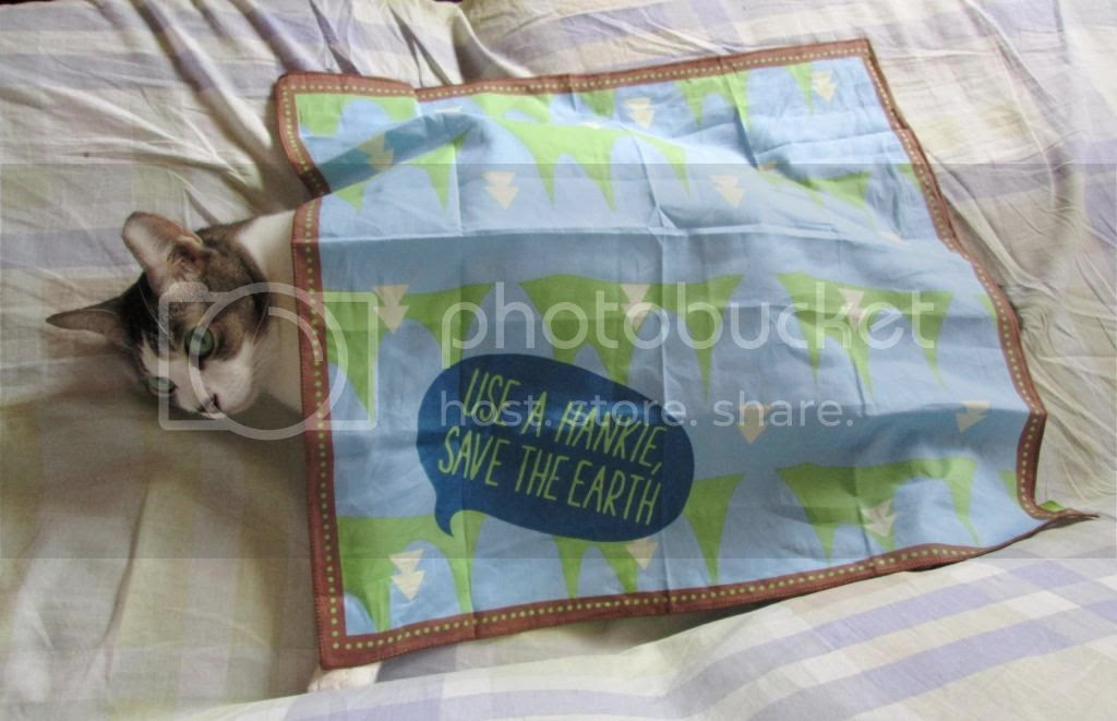 photo InnisfreeEcoHandkerchief07.jpg