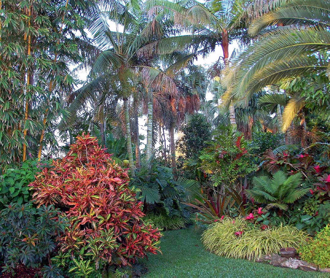 Tropical Home Garden Design Ideas: 21+ Beautiful Tropical Landscaping Ideas Photos