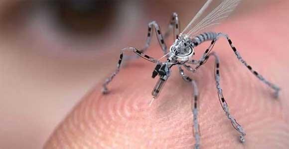 moustique-adn