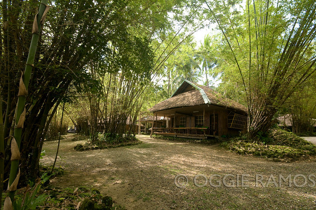 Guimaras Costa Aguada Bamboo Beach Cottage