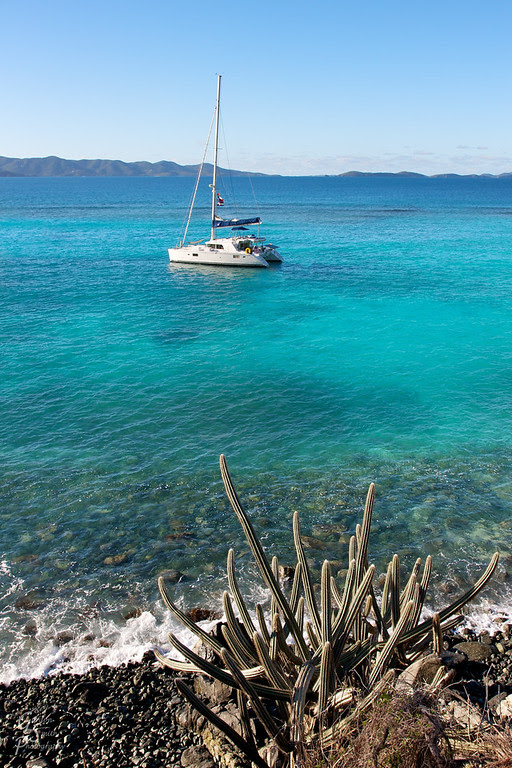 sailboat and cactus white bay jost van dyke bvi