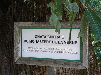 chataigneraie chartreuse de la verne.jpg