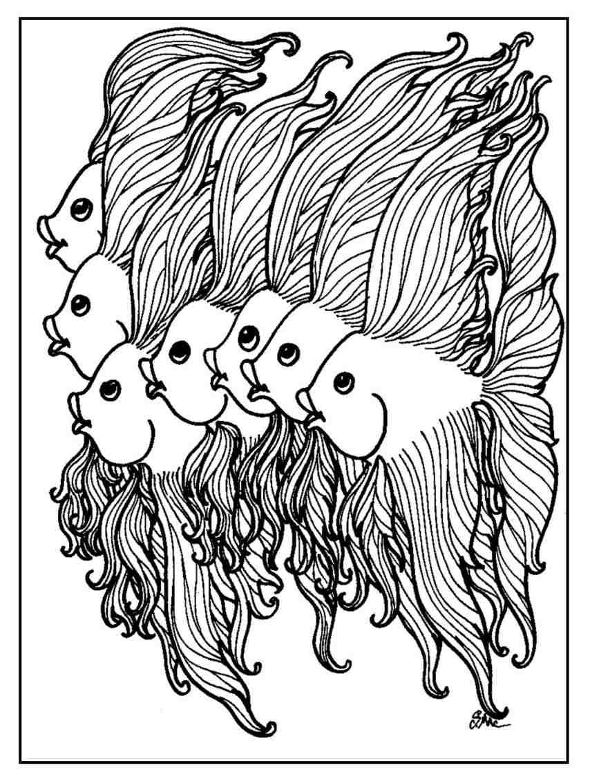 Funny Fish Coloring Pages - S.Mac's Place to Be