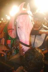Some Horses Are More Human Than Muslims by firoze shakir photographerno1