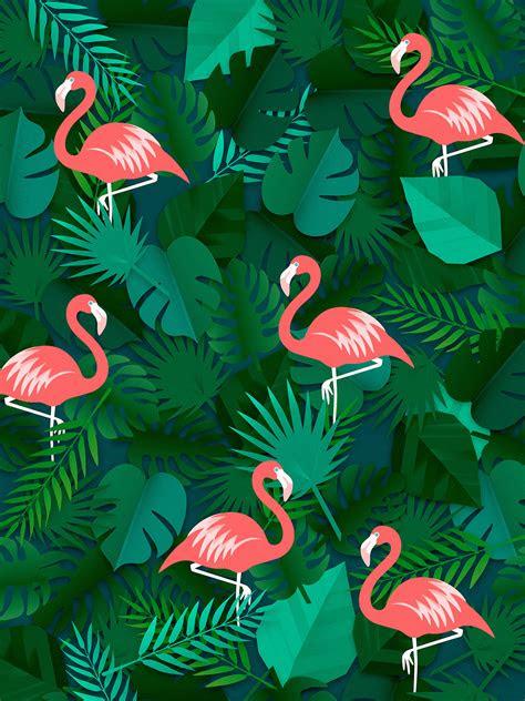 flamingo wallpaper  images