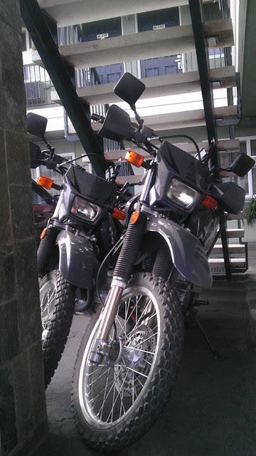 morro-bay-012514 (120)