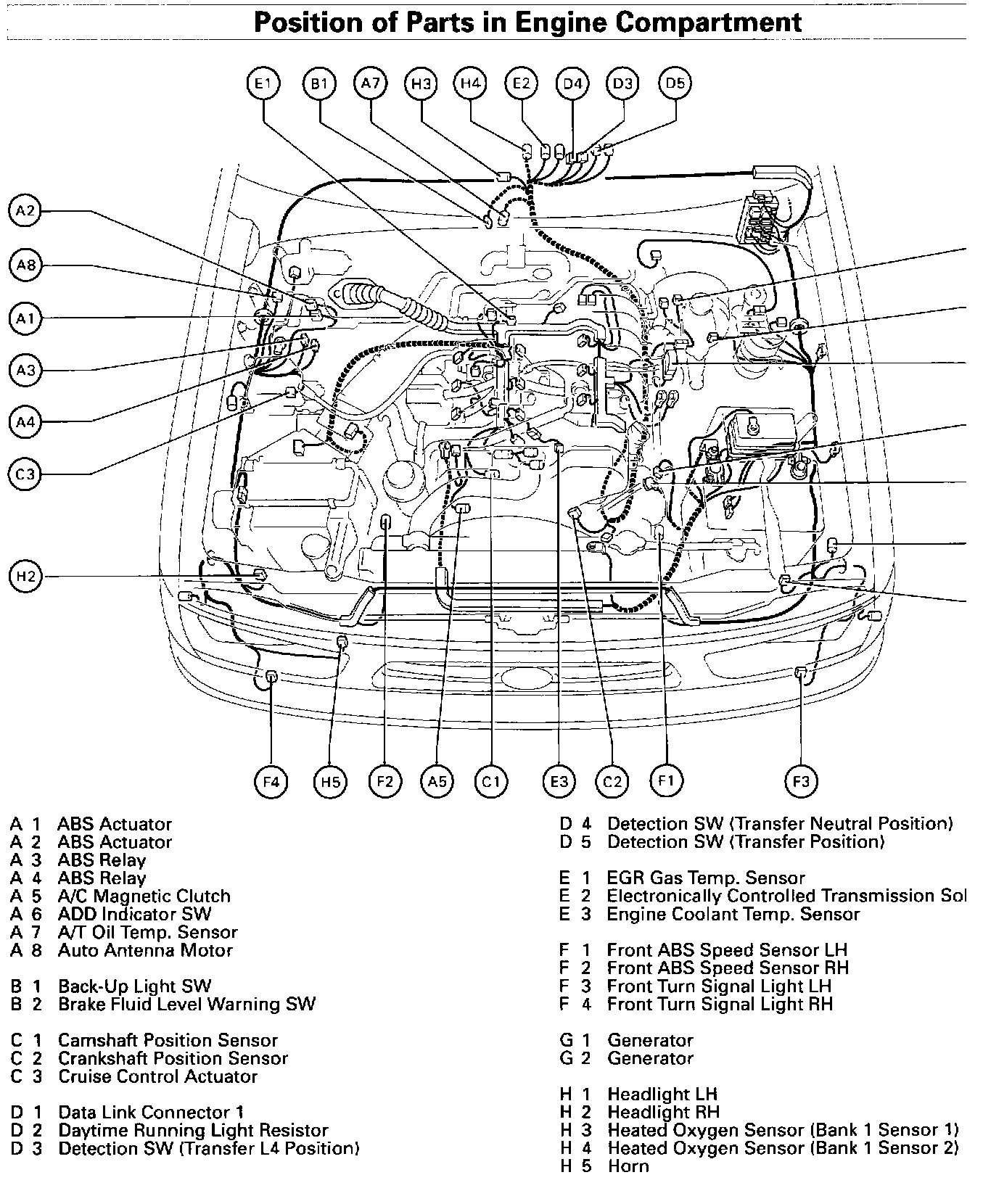 Toyota Tacoma Engine Diagram 25x4 Sony Xplod Wiring Diagram Begeboy Wiring Diagram Source