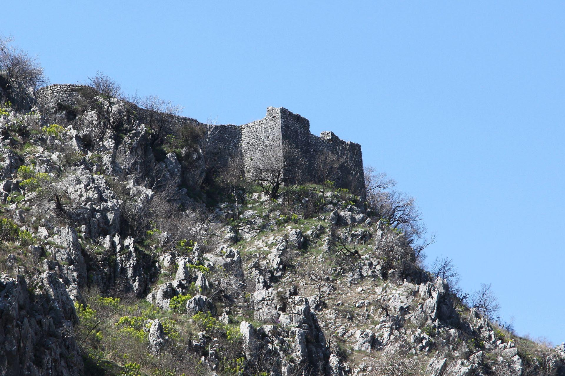 Resultado de imagem para Spuž