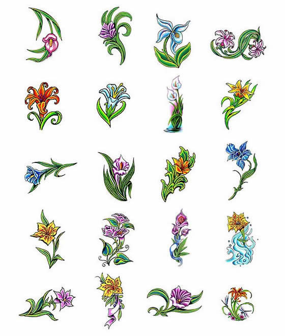 Lily Tattoos What Do They Mean Lilly Tattoos Designs Symbols