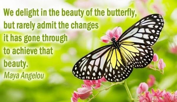Best Butterfly Quote By Maya Angelou We Delight In Beauty Of