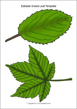 Editable green leaf templates (SB10010) - SparkleBox | Herfst ...