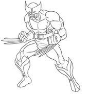 Dibujos Para Colorear Wolverine Morning Kids