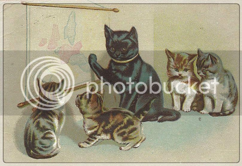 vintage_cat_postcard-1