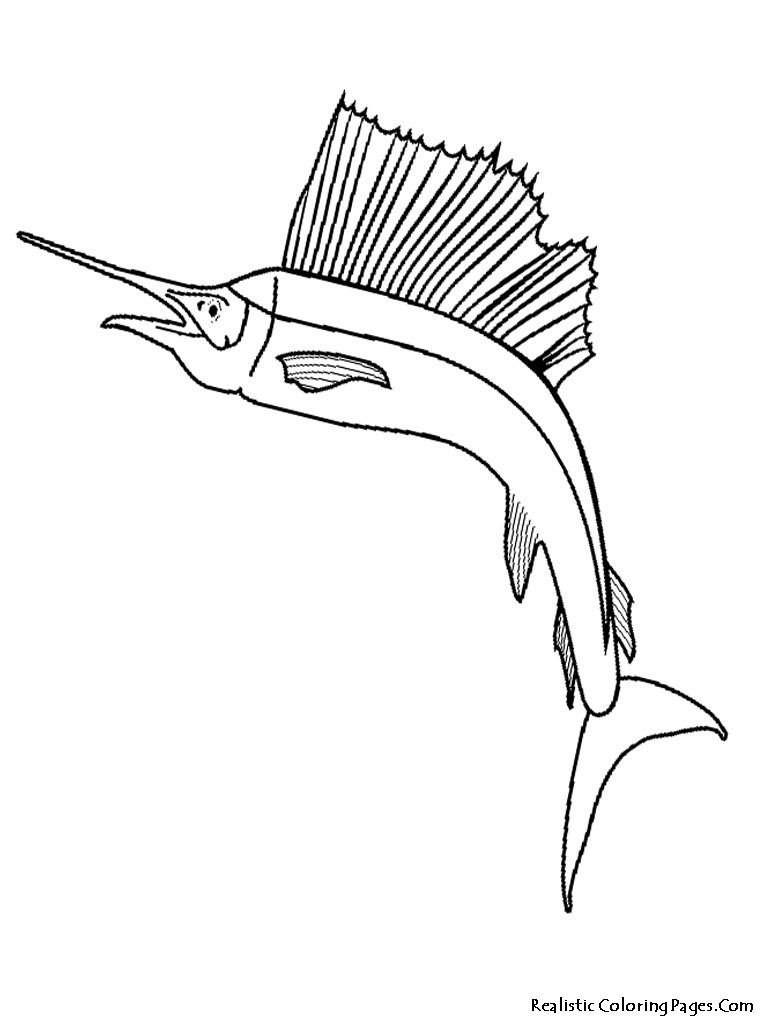 Parrot Fish Coloring Page at GetColorings.com   Free ...
