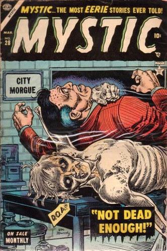 Mystic 28 cov