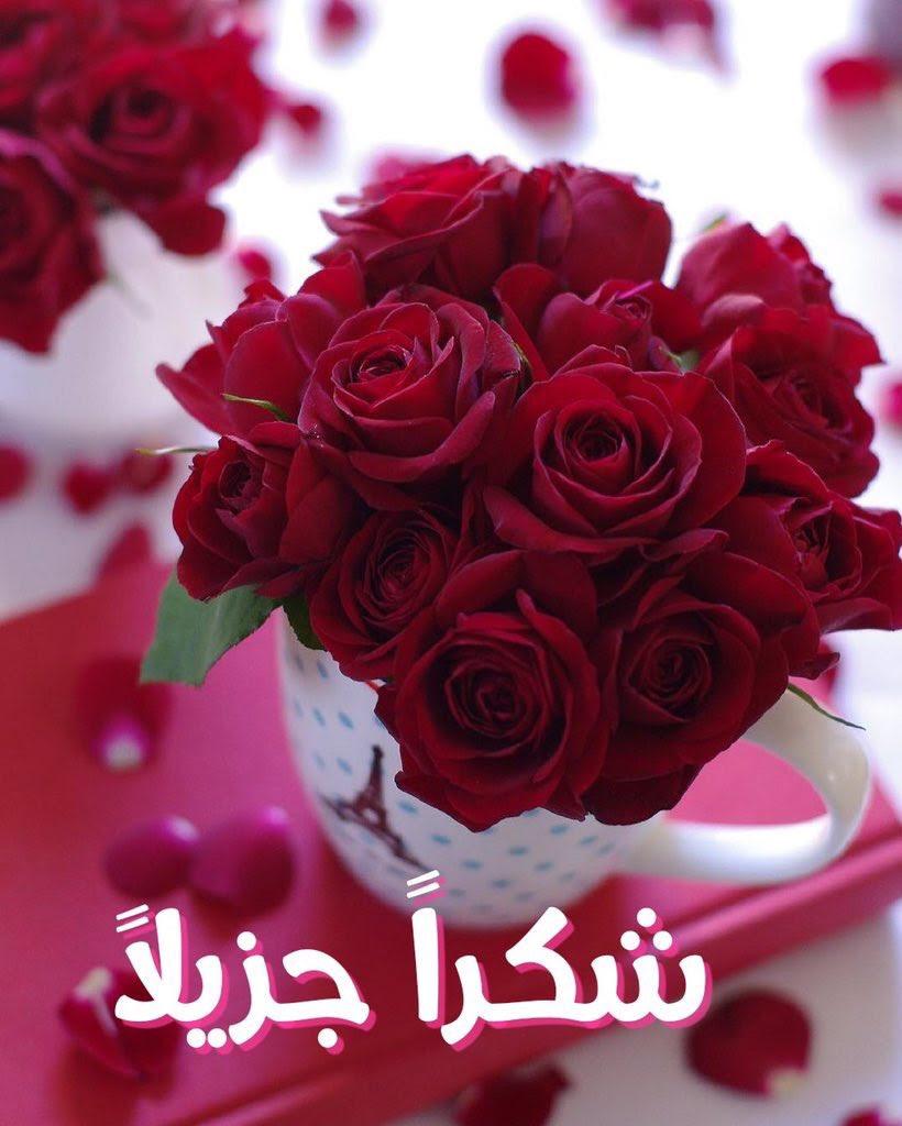 عبارات شكر شكرا حبيبي على الهديه Asyalafi Blogspot Com