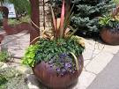 Plants Decorate Garden Patio - Best Patio Design Ideas