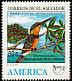 American Pygmy Kingfisher Chloroceryle aenea