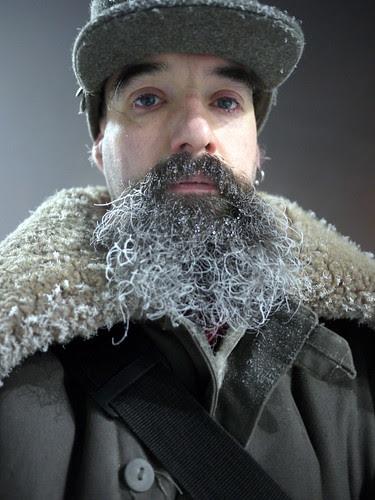 Beardicles