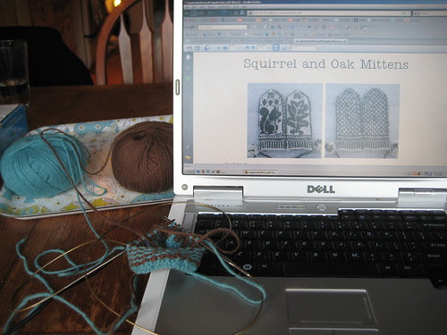 Starting the Squirrel and Oak Mittens