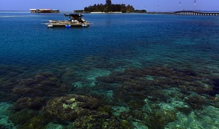 Beberapa Tempat Wisata  Di Kalimantan  Barat
