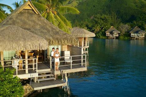New Zealand Luxury Villas Vacation Rentals Airbnb Luxe Luxury Retreats
