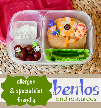 allergy-free lunchbox ideas from: Following in my Shoes