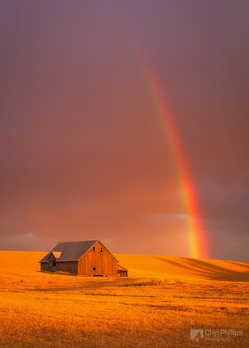 Barn and Rainbow, Palouse por Chip Phillips