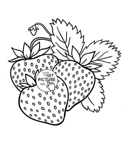fruit printable coloring pages fruit pineapple fruits