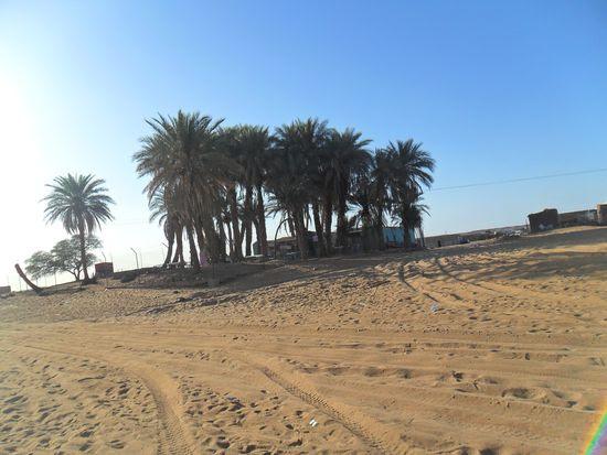 FiSahara_Ali Salem ISelmu