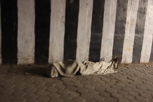 Tumhe Milgaya Thikana Hame Maut Bhi Na Aie ,,, Au Vote Lene Wale ,, by firoze shakir photographerno1